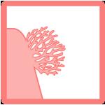 IkoncaSpecialnost_CoralReef